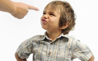 Это воспитание: способы организации воспитательного процесса