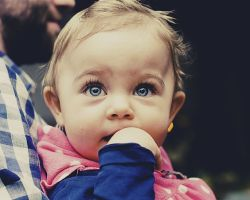 Воспитание детей в возрасте одного года: характеристика сенсорных ощущений