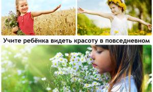Воспитание эстетического  вкуса для развития личности