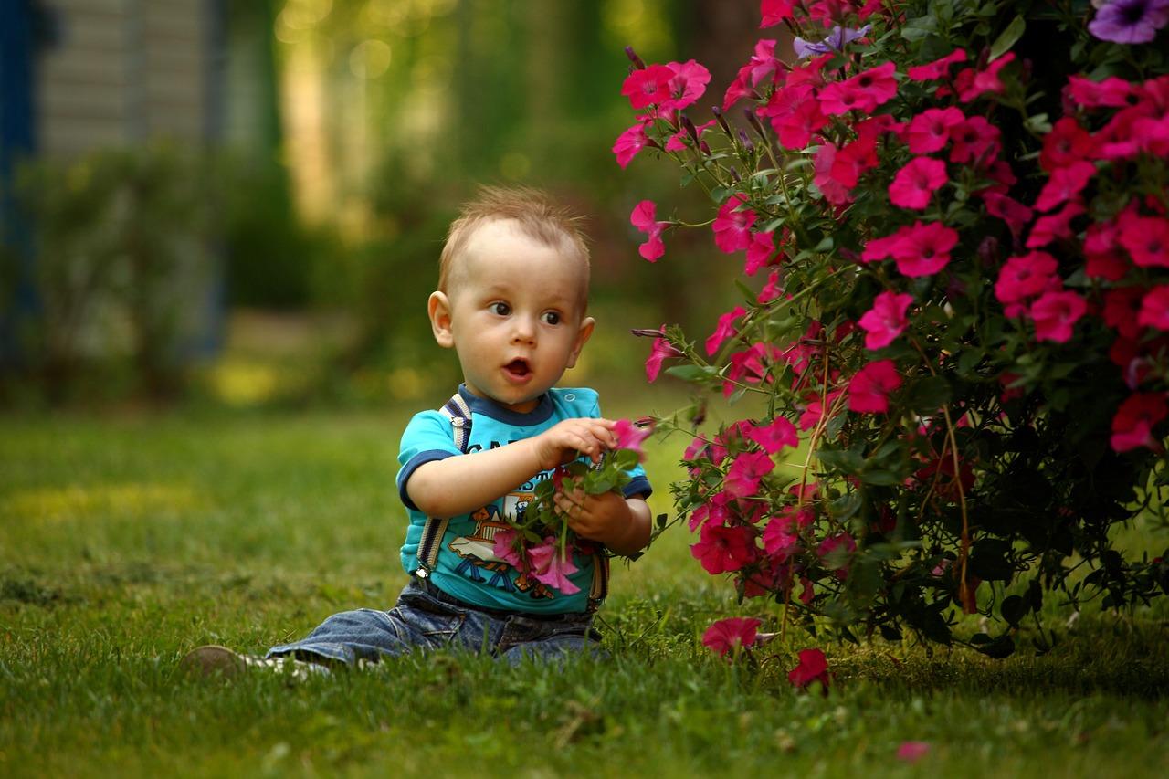 малыш познает мир